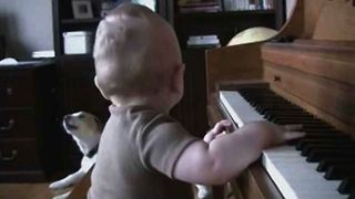 Kiddie Canine Piano Performance
