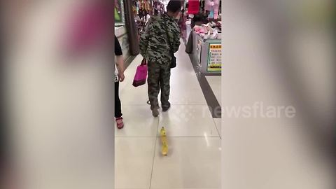 Quack Friday? Man walks cute ducklings through shopping centre