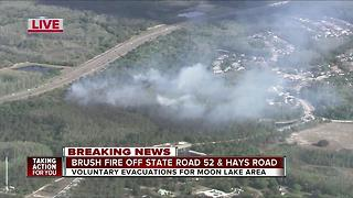 Brush fires prompt voluntary evacuations in Pasco County - Video