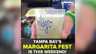 Tampa Bay Margarita Festival begins this weekend! | Taste and See Tampa Bay