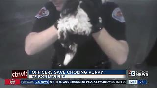 New Mexico officers save choking puppy - Video