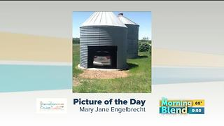 Monday's Picture of the Day - Video