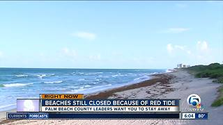 Many Palm Beach County beaches will remain closed Wednesday for red tide