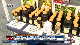 Captiva Island Farmers Market opens Tuesday - 7:30am live report - Video