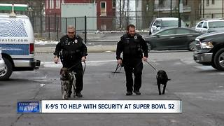 K-9's to help with security at Super Bowl 52 - Video
