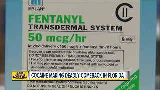 Cocaine making deadly comeback in Florida