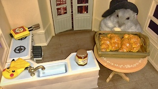 Tiny hamster enjoys tiny baked croissant - Video