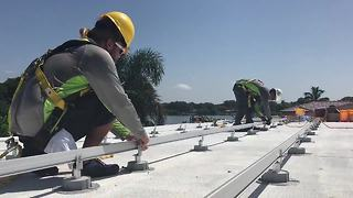 St. Pete considering new solar panel legislation-Digital Short - Video