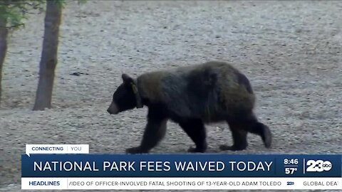 National Park fees waived today