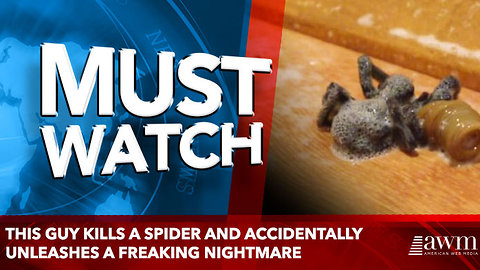 This Guy Kills A Spider And Accidentally Unleashes A Freaking Nightmare