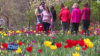 Hundreds enjoy Mother's Day with nice weather - Video