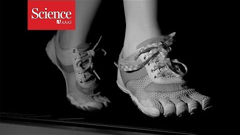 Why do shoelaces untie themselves?