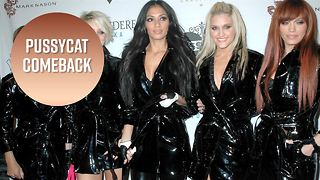 The Pussycat Dolls may be getting back together - Video