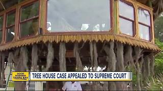Told their treehouse must go, Holmes Beach couple looks to bring the fight to Supreme Court - Video