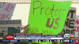 Stoneman Douglas students head to Tallahassee for Wednesday rally against gun violence - Video