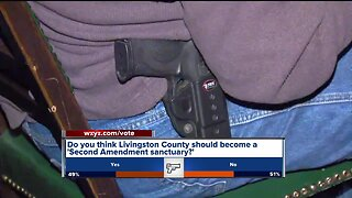 Do you think Livingston County should become a 'Second Amendment sanctuary'?