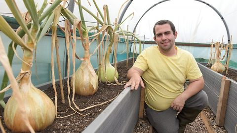 Sweet leeks are made of these! Allotment owner says stroking giant veg is his secret to making them so big