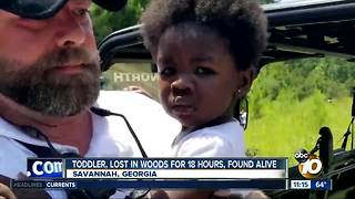 Toddler lost in woods found alive