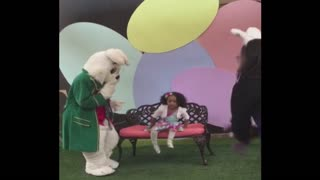 Easter Bunny Gets A Little Too Close For Comfort - Video