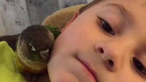 Parrot snuggles with new best friend