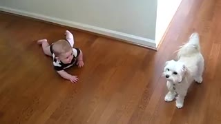 Dog And Baby Are Dancing
