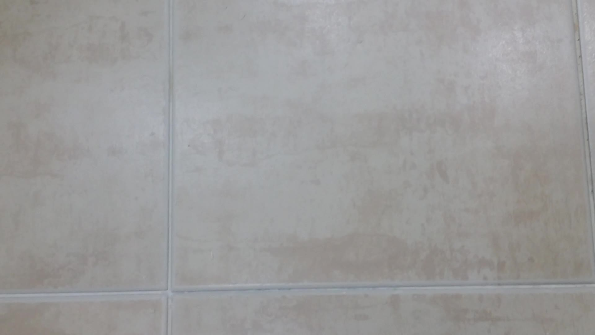 tile royalty tiles bathroom stock with toilet walls clean free light floor cleaning images new and on image apartment