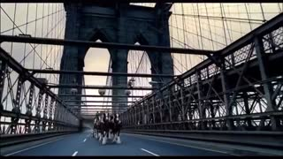 The Budweiser Clydesdale Horses Share a Tribute to the Victims of the World Trade Center Attacks - Video