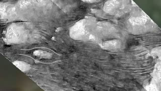 NASA captures Titan's Dunes of Shangri La