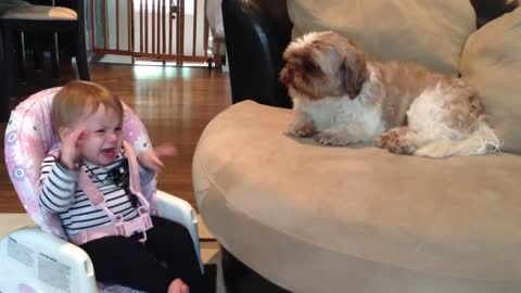 Baby STILL argues with Dog