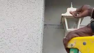 Yellow Jacket Nest Destroyer - Video