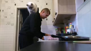 "Cat ""assists"" owner prepare his dinner"