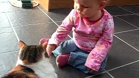 Cat and baby play along well