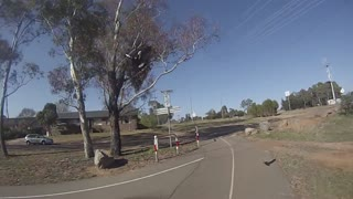 Another Spring Day Commuting In Canberra - Video