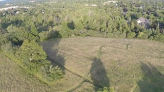 Mysterious Crop Circles Appear from Nowhere