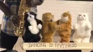 Man in hate saxophone stuffed animals dance - Video