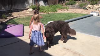 Kids have interesting discussion about dog kisses - Video