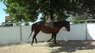 3 Year Old Sianna Taking a Ride On a GIANT Mare - Video