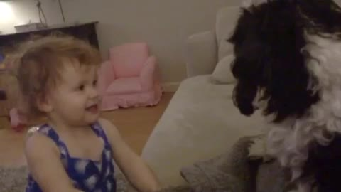 Baby gives kisses to Shih Tzu dog