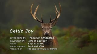 Celtic Joy - Yohanan Cinnamon - from Recollections album - Video