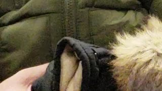 Man holds strange looking stuffed toy puppet, sleeps on subway train