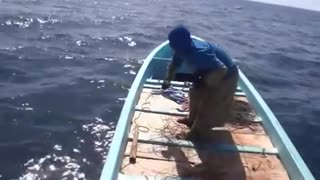 Fishing of the gutter, A number of geothermal fish were caught
