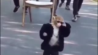 Funny Moments #MONKEY SWAG - Video