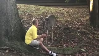 Guy feeding deer with his mouth