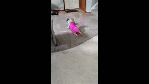 Puppy and toddler play precious game of fetch