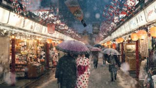Photographer Captures Tokyo During A Heavy Snowstorm - Video