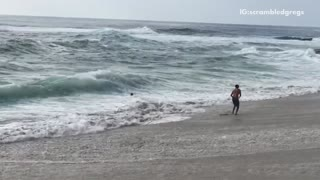 Kids trying to dodge waves get knocked over by waves