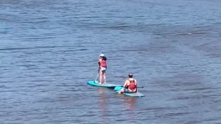Two people on paddle boards lake