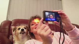 Narcissistic Dog Flashes Teeth At The Camera For A Selfie