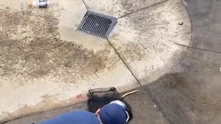 Rescuing an Opossum from Skate Park Bowl