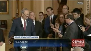 Chuck Schumer Reveals How Dems Feel About House Investigation Into DOJ: 'We're All Worried' - Video